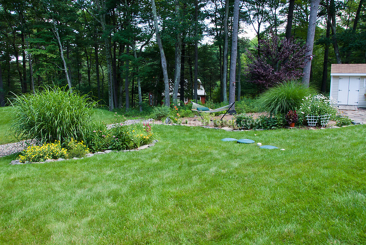 Septic field landscaping in backyard plant flower for Landscaping rocks under trees