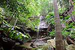 Waterfall, Strickland State Forest, NSW