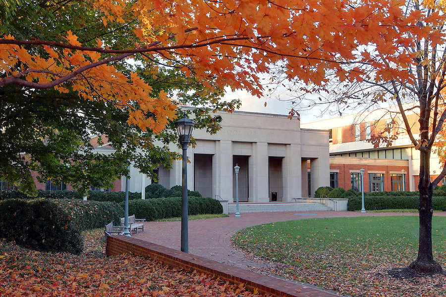 Fall leaves cover the trees outside the UVa School of Law at the University of Virginia. Photo/Andrew Shurtleff