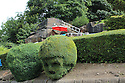 2016_07_24_elvis_is_in_the_garden