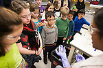12/18/2012- Medford, Mass. - Students from the Acera Massachusetts School of Science, Creativity and Leadership in Melrose visit the lab of Assistant Professor of Chemical and Biological Engineering Matt Panzer at the Science and Technology Center on Dec. 18, 2012. (Kelvin Ma/Tufts University)