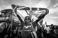 EU Referendum - The United Kingdom Leaves the European Union