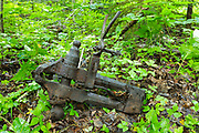 Artifact (old blacksmith vise) at Camp 22 which was a logging camp located along the East Branch & Lincoln Railroad in the Thoreau Falls Valley of the Pemigewasset Wilderness in Lincoln, New Hampshire. The EB&L was a logging railroad which operated from 1893-1948.