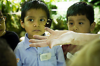 """Children from the Goddard Riverside Head Start Program observe a Doris Longwing butterfly (heliconius doris) in """"The Butterfly Conservatory:  Tropical Butterflies Alive in Winter"""" at the American Museum of Natural History in New York on Thursday, October 6, 2011.  500 butterflies hover above the visitors in the 1200 square foot  vivarium where children and adults can observe and play amongst the flying beauties.  (© Frances M. Roberts)"""