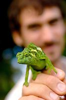 Man Holding Jackson Chameleon