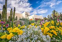 J W Marriott Camelback Resort in Scottsdale Arizona