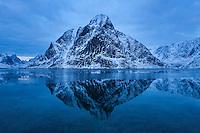 Winter reflection of Olstind mountain peak in fjord, Reine, Moskenesøy, Lofoten Islands, Norway