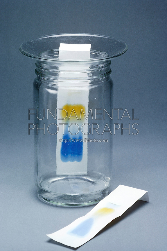 Paper Chromatography in Chemistry Paper Chromatography Black