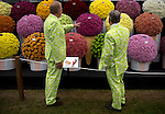 Two men look at a flower display in the Great Pavilion at the RHS Chelsea Flower Show in London