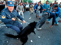 Police use dogs to control protesters during a demonstration in the dying days of apartheid.