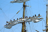 Sailors furling sails during tall ship sail past Halifax harbour Nova Scotia Canada North America