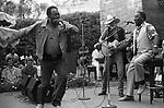James Cotton, Johnny Winter, Muddy Waters. Paul Masson Winery, Saratoga, CA, 9/12/81