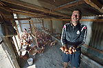 Ram Krishna Adhikari displays eggs laid by his chickens in Makaising, a village in the Gorkha District of Nepal, where a church-sponsored humanitarian agency has provided a variety of support to local villagers--including income generating projects like Adhikari's chickens--in the wake of a 2015 earthquake.