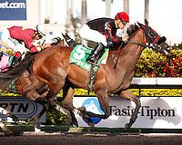 Musical Romance(5) and jockey Juan Leyva winning the Inside Information Stakes(G2) at Gulfstream Park. Hallandale Beach, Florida. 03-17-2012