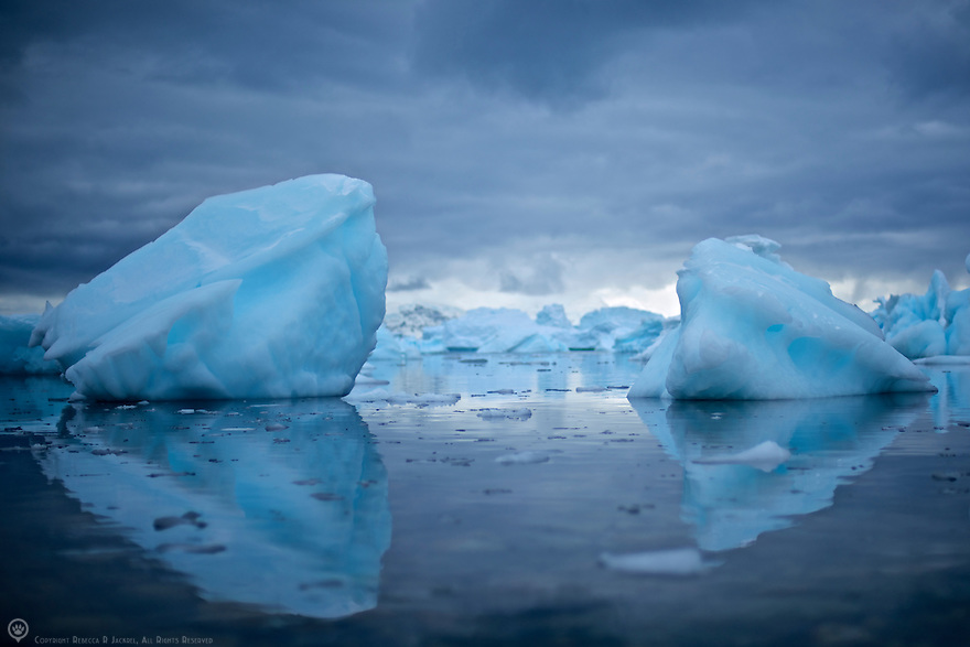 Glacial ice washed ashore on Cuverville