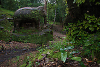"Phnom Kulen, ""Elephant Park"" and Bat Caves, Cambodia"