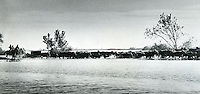 Ranchers herd their cattle thru flood waters in the San Francisco Delta near Islton,Ca. 1983 had heavy flooding on the Island when levies broke. <br />(photo 1983 by Ron Riesterer)