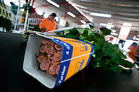 A wraped box of roses on the flow line in the packaging hall of a flower farm in Cayambe, Ecuador, 23 June 2010. South American countries (Colombia and Ecuador) are world leaders in cut flower industry. The advantage of the moderate sunny climate, very cheap labor force in combination with the absence of social laws and environmental regulations have created perfect conditions for the cut flower production. Flower growing is very fragile and necessarily depends on irrigation and chemical maintenance, provided by highly toxic pesticides. About 50.000 workers in Ecuador, working mainly for living minimum wage, keep the floral industry going and saturate the market generated by consumerist culture the US, Canada and Europe.