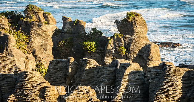 Morning photo of Pancake Rocks, limestone formations on wild coast in Punakaiki, Paparoa National Park, Buller Region, West Coast, New Zealand, NZ