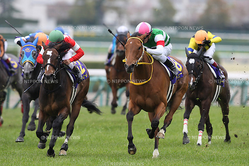 (L-R) Admire Bijin (Hirofumi Shii), Red Reveur (Keita Tosaki), Harp Star (Yuga Kawada), Marble Cathedral (Hironobu Tanabe),<br /> APRIL 13, 2014 - Horse Racing :<br /> Harp Star ridden by Yuga Kawada wins the Oka Sho (Japanese 1000 Guineas) at Hanshin Racecourse in Hyogo, Japan. (Photo by Eiichi Yamane/AFLO)