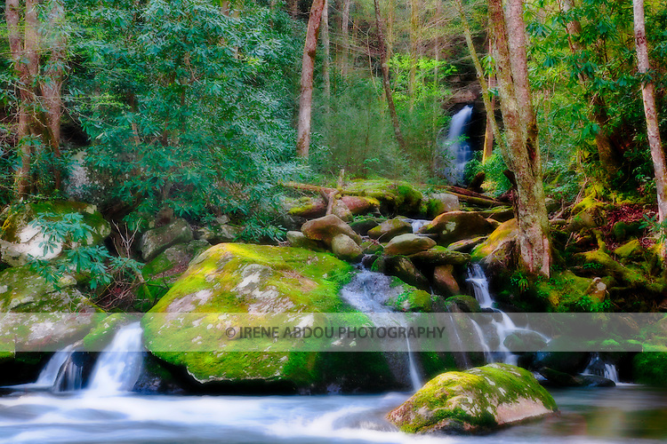 Cool water quietly streams into a river in the Smoky Mountains National Park in Tennessee.