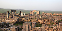 General view of Volubilis on a fertile plain in Northern Morocco, with the Triumphal Arch of Caracalla, 217 AD, on the right and the Portico leading to shops on the main street or Decumanus Maximus on the left. Volubilis was founded in the 3rd century BC by the Phoenicians and was a Roman settlement from the 1st century AD. Volubilis was a thriving Roman olive growing town until 280 AD and was settled until the 11th century. The buildings were largely destroyed by an earthquake in the 18th century and have since been excavated and partly restored. Volubilis was listed as a UNESCO World Heritage Site in 1997. Picture by Manuel Cohen