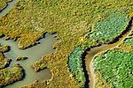Nederland, Zeeland, Zeeuws-Vlaanderen, 19-10-2014; Het Zwin, oorspronkelijk zeearm, nu een strandgeul omgeven door schorren. De witte paal is een grenspaal.<br /> The Zwin, originally estuary, now a beach gully surrounded by marshes.<br /> luchtfoto (toeslag op standard tarieven);<br /> aerial photo (additional fee required);<br /> copyright foto/photo Siebe Swart