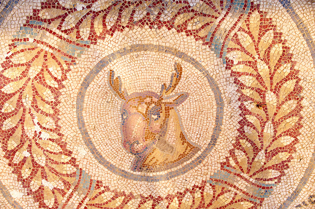 Ancient Roman mosaics at the Villa Romana del Casale, Sicily, Italy Pictures, Photos, Images &amp; fotos