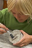 Kinder gießen Tierspur aus Gips, Junge reinigt Gipsabdruck vom Trittsiegel, der Fußspur von einem Reh mit einem Pinsel von Erdresten