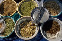 Asie/Inde/Maharashtra/Bombay: Colaba Market - Etal de légumineuses d'un marchand de légumes