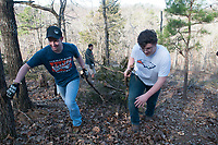 NWA Democrat-Gazette/FLIP PUTTHOFF <br /> Joseph Nunnelee (left) and Carter Hiller, students at Rogers Heritage High School, drag cut cedar trees for burning Feb. 18 2017 during a glade restoration project at Hobbs State Park-Conservation Area. The restoration is along the Shaddox Hollow Trail. Heritage War Eagles football players volunteered to help with the project.