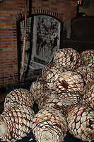 &quot;Agave Pi&ntilde;as&quot;- These agave pi&ntilde;as are used in making tequila.  Photographed near Puerto Vallarta, Mexico.