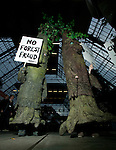 Avaaz Climate Activists in tree costumes protest a move by Sweden, Finland, and Austria to dodge their emission responsibilities, and drag down climate targets by not fully accounting for emissions from forest management. (Credit: Robert van Waarden)