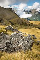 Morning in Southern Alps near Fox Glacier, Westland Tai Poutini National Park, West Coast, UNESCO World Heritage Area, New Zealand, NZ