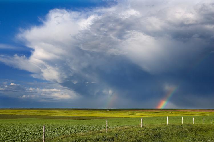 Rainbox over the prairie