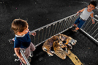 Small boys, members of the old circus family Fuentes Gasca from Mexico, play with tiger puppies in the backstage of Circus Renato, in San Salvador, El Salvador, 7 May 2011.