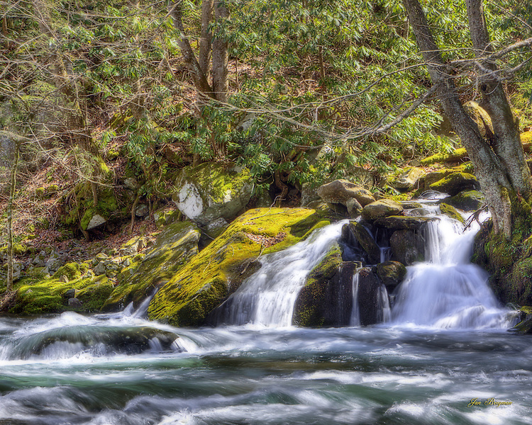 One of the many cascades that make the Smokies a photographer's paradise. Three exposure HDR, Ortonized.