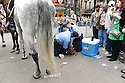 Man is arrested at parade Downtown, 2011