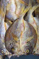 Split Dried fish in Sandakan market, Sabah, Borneo