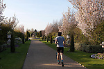 One man jogging through Avenue Gardens in Regent's Park, London, England