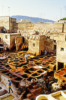 Les Tanneries (Dyer's Quarter), the Medina, Fes el-Bali (Old Fes), Fez (Fes), Morocco