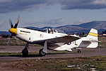 "Legendary pilot Bob Love taxies his P-51 Mustang ""Bernie's Bo"" after a flight in 1985. Bob was an instructor pilot in the P-38 lightning during the World War II and became an ace in the Korean War flying the F-86 Sabre. Bob also participated regularly at the Reno Air Races each September. Bob passed away in the fall of 1986 and his Mustang since been owned by Russ Francis, Bill Dause, and is now owned by Dream Machines LLC."