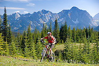 Kananaskis Country, Alberta, Canada, August 2008. Mountain bikers ride the unhardened mountains trails. The Kananaskis is a tranquil and green part of the Rocky Mountains. Away from the masses it offers many outdoor adventure possibilities. Photo by Frits Meyst/Adventure4ever.com