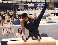Men's Big 10 Gymnastics Saturday