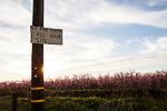 Fresno County Blossom Trail
