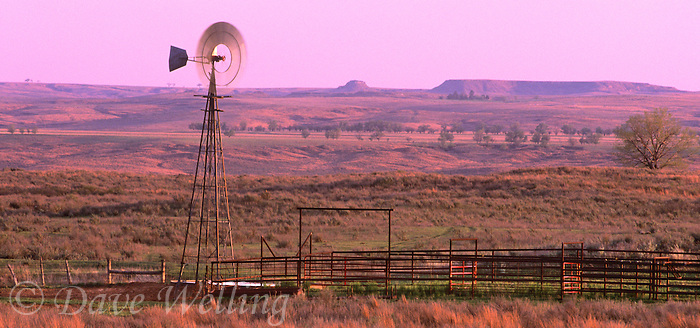 980000010 a panoramic view of an active windmill and cattle fencing and water tank on the open grasslands of the panhandle near canadian texas