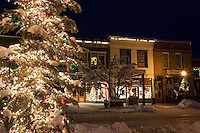 """Snowy Christmas Tree in Truckee 3"" - This snow covered Christmas tree was photographed in Downtown Truckee, California."