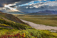 Morning sunshine breaks through the clouds in Polychrome Pass, Denali National Park, Alaska.