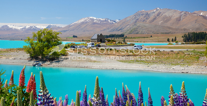Lupins, Church of the Good Shepherd, Mackenzie Country, South Island, New Zealand - stock photo, canvas, fine art print
