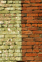Green and brown brick wall of a building in Bellingham, Washington, USA....